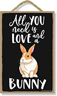 Honey Dew Gifts All You Need is Love and a Bunny Spring Funny Home Decor for Pet Lovers, Farm Animal Hanging Decorative Wa...