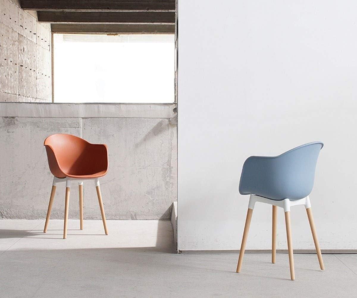 HLR Chaise Salle à Manger Salle à Manger Chaise Design Chaise Chaise de Loisirs de la Maison de la Mode créative (Color : B) C