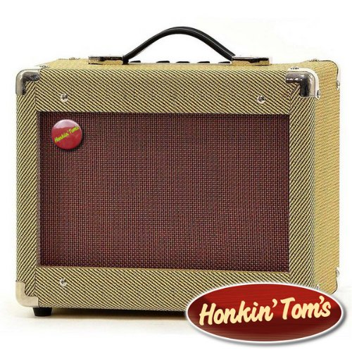 Honkin' Toms' Vintage 15W Guitar Amp / Harmonica Amplifier- Classic looks...