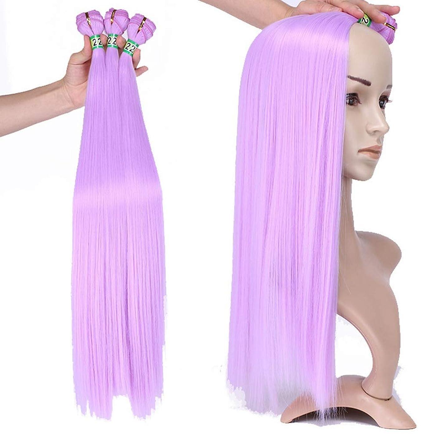 リビジョン愛情ごちそうHOHYLLYA 3バンドルライトパープルストレート人工毛織りバンドル高温繊維ヘアエクステンション100グラム/バンドル複合ヘアレースかつらロールプレイングかつらロングとショート女性自然 (色 : Light purple, サイズ : 20inch)