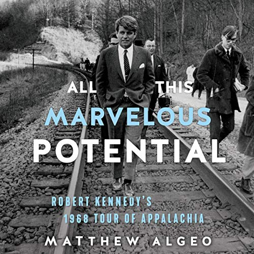 All This Marvelous Potential cover art