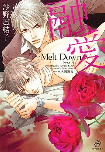 融愛~Melt Down~ (SHY文庫33)