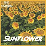 Sunflower Calendar 2022: 2021-2022 Sunflower Weekly & Monthly Planner   2-Year Pocket Calendar   19 Months   Organizer   Agenda   Appointment   For Sunflower Lovers