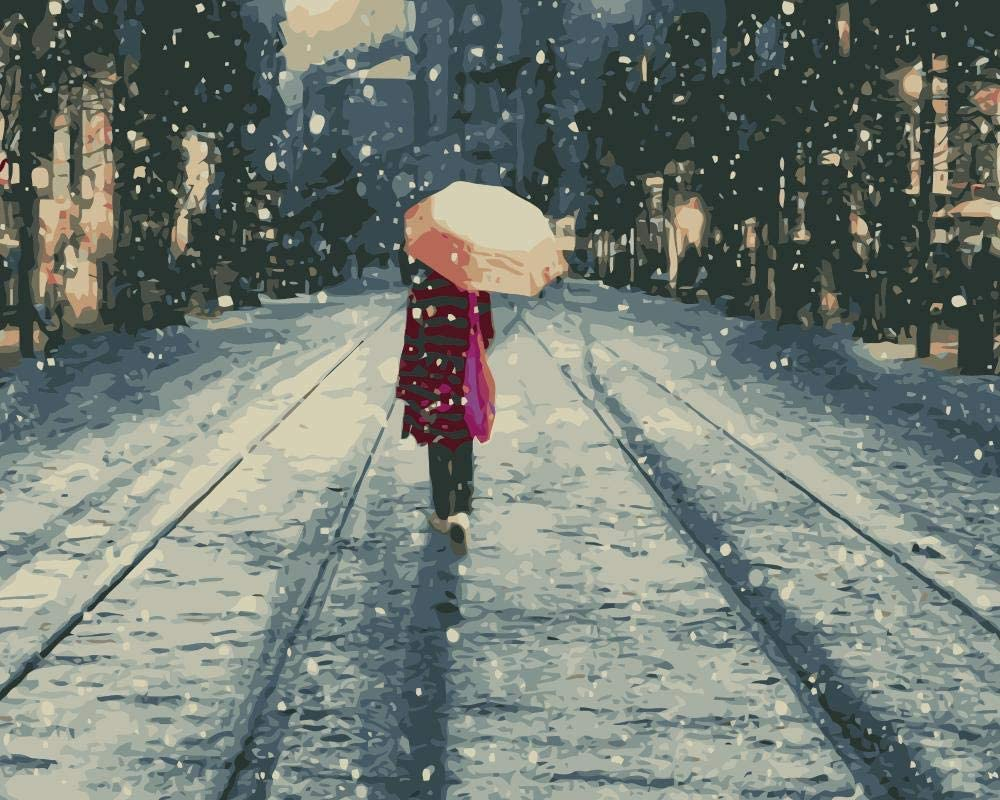 HRKDHBS Painting by Number Kits Adult low-pricing Girl Acryli Snow Sale price DIY Scene