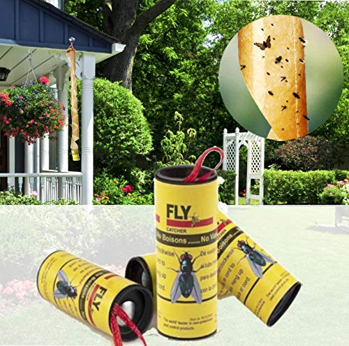 Dwcom 20 Pack Sticky Fly Ribbon Catcher