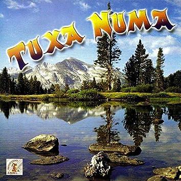 Tuxa Numa