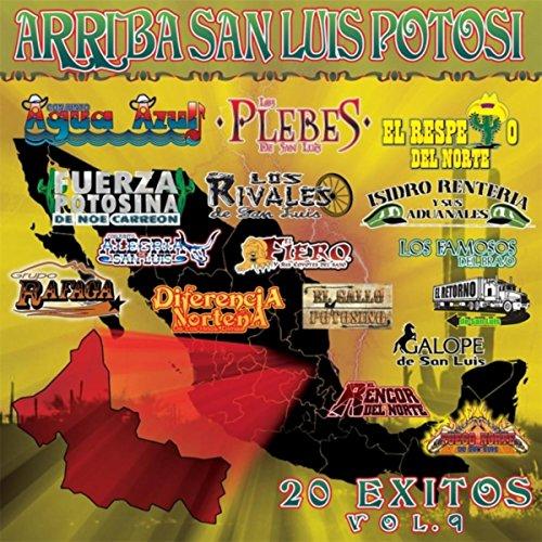 Arriba San Luis Potosi, Vol. 9