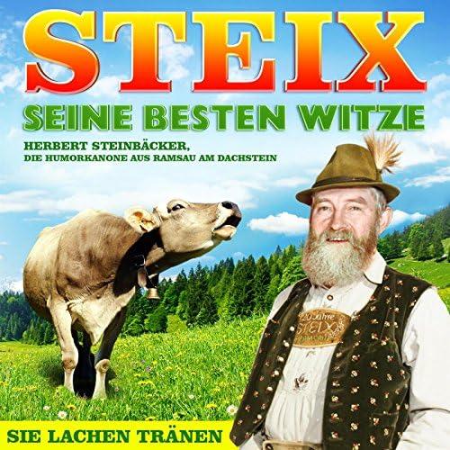 Steix & Various Artists