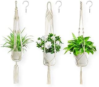 Best 18 plant hanger Reviews