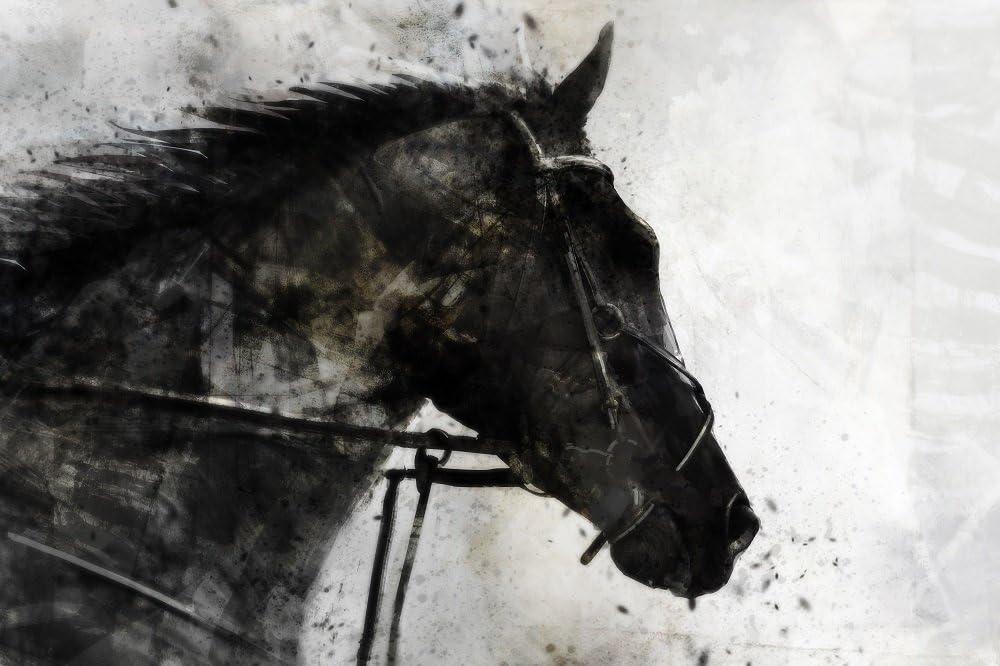 ArtMaison.ca JSH056ONL 超目玉 Horse Black 記念日 art canvas 24