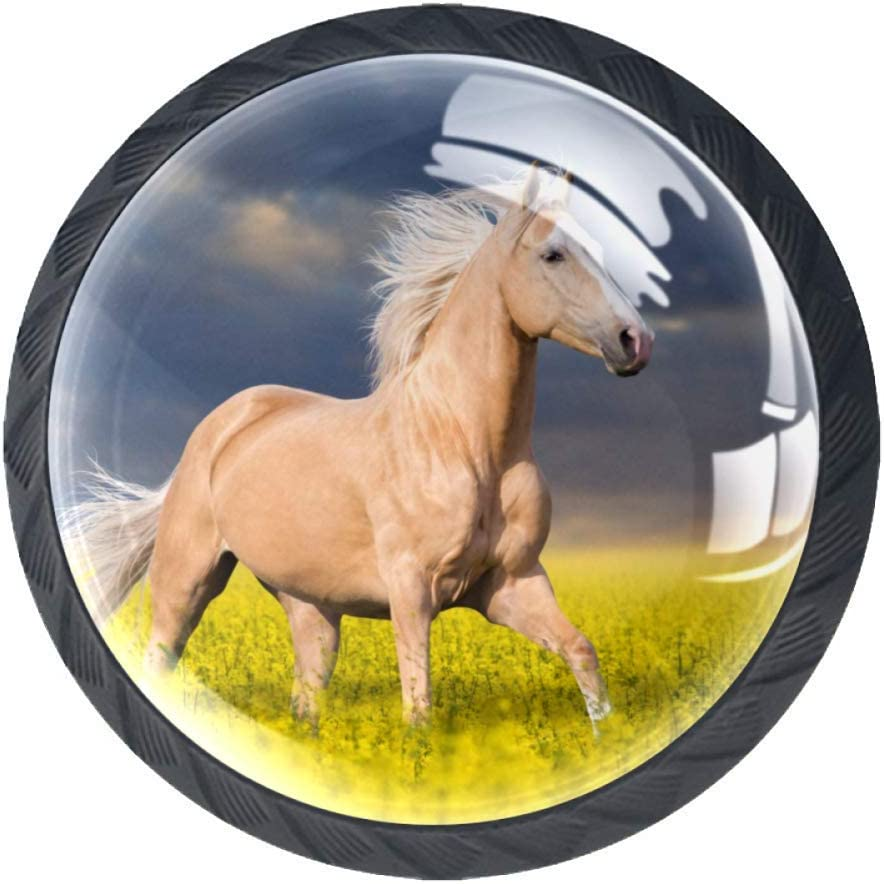 Set of 6 For the Love of Horses Print Cabinet Knobs