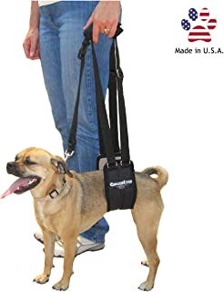GingerLead Dog Support & Rehabilitation Harnesses - Padded Sling with Leash for Comfort and Control