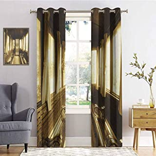 hengshu Antique Blackout Curtains - Gasket Insulation Old Vintage Train Salon Inside Historical Transport Windows with Curtains Arch Shape Blackout Curtains for The Living Room W72 x L72 Inch Sepia