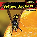 Yellow Jackets (Scavengers: Eating Nature's Trash)