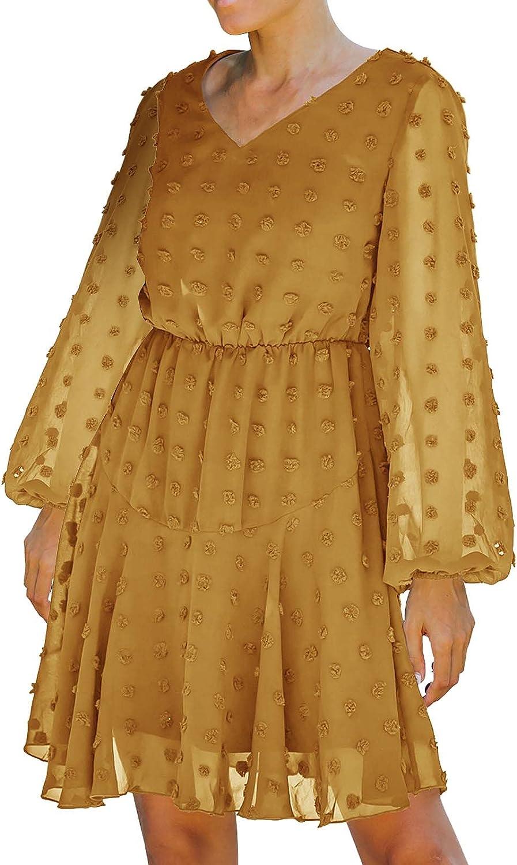 A2A V Neck Dress for Women Long Sleeve Plus Size Casual Polka Dot Aline Swing Dress Street Wear Mesh Dress Sundress