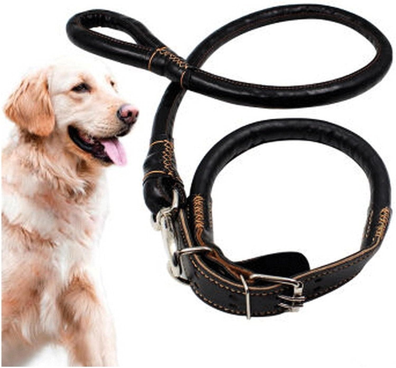 Pet Dog Leash Pet Leash, Walking Dog Leash, Dog Leash, Large Dog, Dog Leash Large, Medium and Small Dogs Training, Walking, jo (color    1, Size   S)