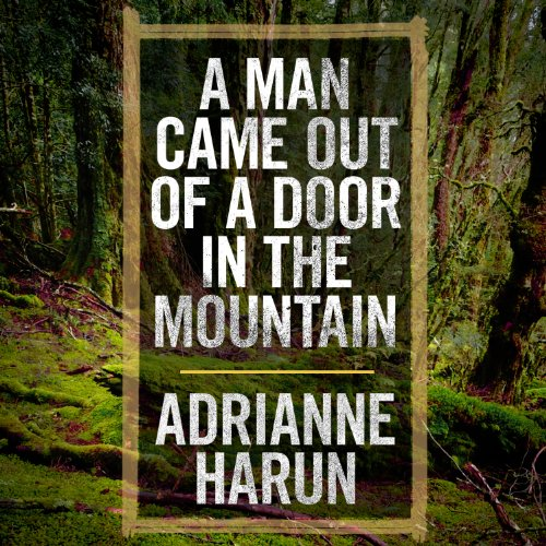 A Man Came Out of a Door in the Mountain audiobook cover art