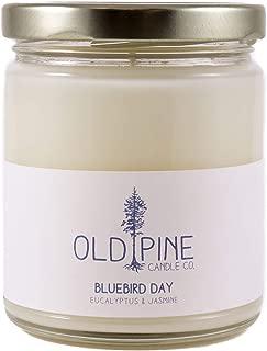 bluebird candles