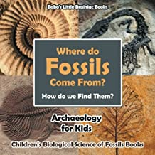 Best archaeology news for kids Reviews