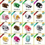 Character Options Zhu Zhu Pets Hamster