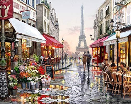 Suntown Pintura por números Pintura de Lona 40x50cm para Adultos y niños con Pinturas acrílicas y 3 Pinceles - Nuestros Recuerdos en París ( Sin Marco )