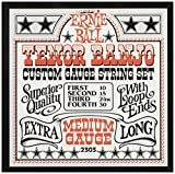Ernie Ball 2303 Tenor Banjo Medium Stainless Steel Loop End Set (10-30)