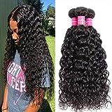Brazilian Hair Water Wave Bundles Wet and Wavy Human Hair Bundles Weave 100% Virgin Hair Curly Wave 3 Bundles (22 24 26)