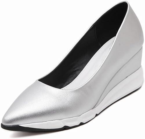 DIDIDD Plate-Forme Européenne de Printemps Plate-Forme épaisse Chaussures Pointe Pointe avec des Chaussures Simples Chaussures Talons Hauts Femmes,Argent,37