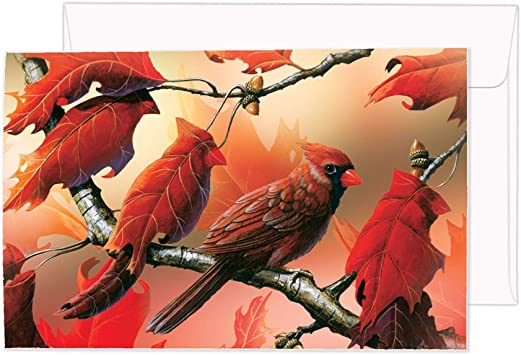 12-Count Notecards with Envelopes 4 x 6 Inches 66686 Orchard Cardinals Tree-Free Greetings ECOnotes Notecard Set