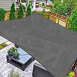 HAIKUS Toldo Vela Cuadrado 2x2 m, Vela de Sombra HDPE, Transpirable, Resistente y 95% Protección Rayos UV para Exterior, Jardín, Terrazas (Grafito)