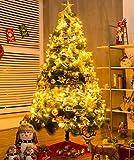 Right Lighting LED イルミネーションライト 500球 30m 8パターン クリスマス飾り  部屋 LED電飾 パーティー・イベント装飾 記憶機能付き 屋外 防水 複数連結可 HD66-Y 黄色