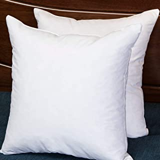 Set of 2, Square Decorative Throw Pillows Inserts Down and Feather Pillow Insert, Cotton Fabric, 22X22 Inches