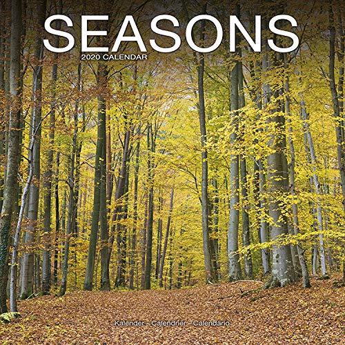 Seasons - Jahreszeiten 2020: Original Avonside-Kalender [Mehrsprachig] [Kalender] (Wall-Kalender)