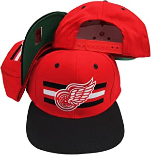 Detroit Red Wings Red/Black Two Tone Snapback Adjustable Plastic Snap Back Hat/Cap