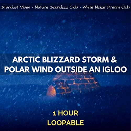 Arctic Blizzard Storm & Polar Wind Outside an Igloo: 1 Hour ...