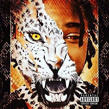 Cheetah Print Dreams