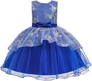 AGQT Girls Embroidery Pageant Dresses Sleeveless Kids Tulle Tutu Princess Prom Evening Dresses Ball Gowns