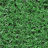 KAIRUI 20mm altura de la pila interior o exterior suelo de césped artificial suelo 1 metro de jardín de césped de ancho (Color : Summer Grass, Tamaño : 1m*10m)