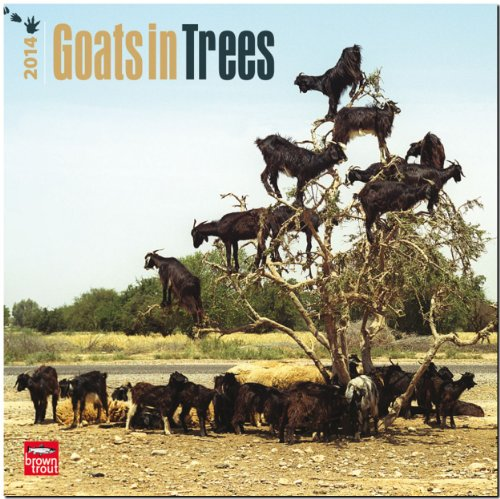 Goats in Trees 2014 Calendar 18-Month (Multilingual Edition)