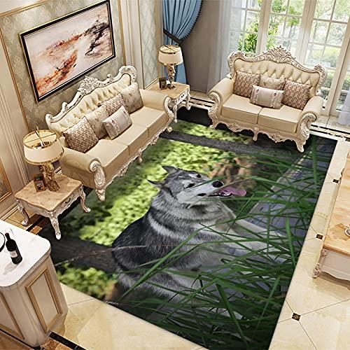 LBMTFFFFFF Alfombra rectangular alfombra de casa alfombra de terciopelo de cristal suave y delicada con la piel, alfombra de soja, 80 x 120 cm