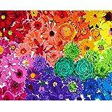 SANYOCZH Pintar por Numeros Adultos, Niños, DIY Paint by Numbers, Cuadros para Pintar por Numeros, Incluye Lienzo, Pincel, Pigmento Acrílico, Decoraciones para El Hogar (20'*16', Flores Arcoiris)