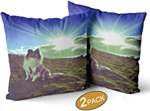 Nine City Dog with Sun Rising Out of Clouds Throw Pillow Cushion Cover,095886 Sofa Bed Throw Cushion Cover Decoration,16