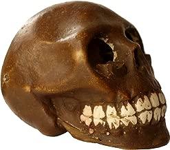 リアルな造形のスカルアッシュトレイ 灰皿 Catacombe(カタコンベ) スカルコレクター必携のアイテム!