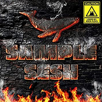 Sample Sesh 1