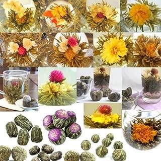 120 Blooms! Wholesale Random Mix Blooming Flowering Tea