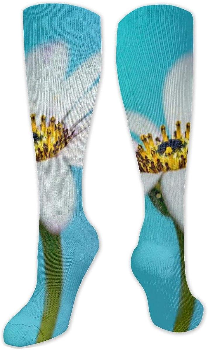 Pink Butterfly Flower Knee High Socks Leg Warmer Dresses Long Boot Stockings For Womens Cosplay Daily Wear