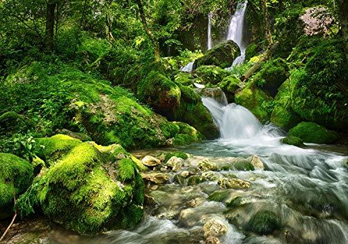 wandmotiv24 Fototapete Wasserfall im Wald, XL 350 x 245 cm - 7 Teile, Fototapeten, Wandbild, Motivtapeten, Vlies-Tapeten, Fluss, Wasser, Moos M5749