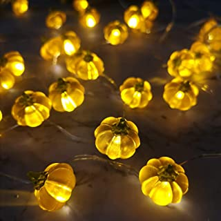 Fall Harvest 3D Pumpkin String Light, Mini Squash Lighting 10 feet 30 LEDs Battery Operated with Multifunction Remote for Thanksgiving Holiday Party House Decoration
