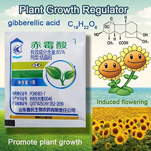 GETSO 1 g Konzentrat Gibberellinsäure 920 Pflanzenwachstumsregulator Pause Schlaf Steigerung der Produktion für Hausgarten Bonsai