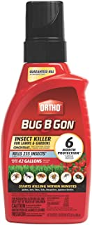 Best bug b gone safe for pets Reviews